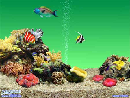 3d fish tank wallpaper for 3d fish tank